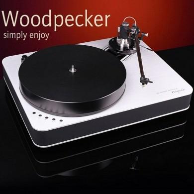Analogue Woodpecker + Morch DP-6 GOLD + Benz Micro Wood